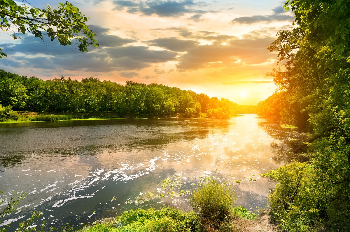 Sunset Over The River in The Forest | HD Free Foto